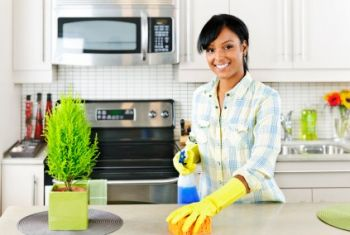 House Cleaning by The Pristine Company, LLC